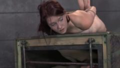 Submissive Bitch Hogtied For Punishment