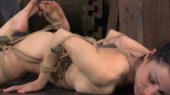 Hogtie Bonded Skank Gets It Hardcore