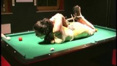 Jj Plush Bound On The Pool Table