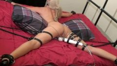 Fair-haired Female In Spread Eagle Tied To A Hitachi